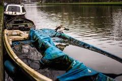 O pato do pato selvagem está em um barco afundado metade em um canal de Amsterdão com sua propagação das asas foto de stock royalty free