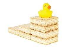 O pato vai adiante Fotos de Stock