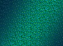 O pavão empluma-se o teste padrão elegante Fotos de Stock
