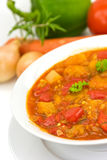 O peito de galinha sopa-stew com o vegetal misturado imagens de stock royalty free