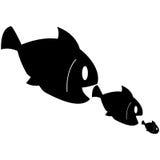 O peixe come peixes Foto de Stock Royalty Free
