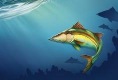 O peixe comum de Snook monta na ilustra??o real?stica em profundidade da ?gua ilustração royalty free