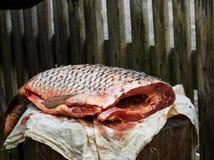 O peixe no coto é cortado com faca afiada mar da carpa Fotografia de Stock Royalty Free