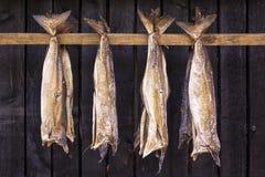 O peixe seco é peixe insosso, especialmente bacalhau, secado pelo ar frio Imagem de Stock