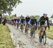 O Peloton em um Tour de France Cobbled 2014 da estrada Fotografia de Stock Royalty Free