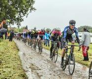 O Peloton em um Tour de France Cobbled 2014 da estrada Fotografia de Stock