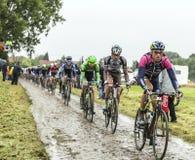O Peloton em um Tour de France Cobbled 2014 da estrada Imagens de Stock Royalty Free
