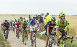 O Peloton em uma estrada da pedra - Tour de France 2015 Imagens de Stock