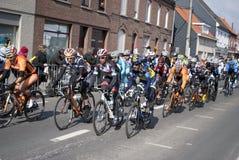 Excursão de Flanders 2013 - o peloton Foto de Stock Royalty Free