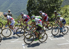 O Peloton no d'Aspin do colo - Tour de France 2015 Imagem de Stock Royalty Free