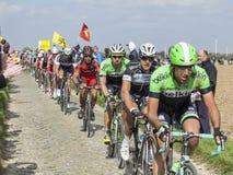O peloton Paris Roubaix 2014 Imagens de Stock Royalty Free