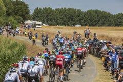 O Peloton - Tour de France 2018 Fotografia de Stock Royalty Free