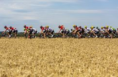 O Peloton - Tour de France 2017 imagens de stock royalty free
