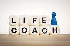 O penhor azul ao lado do treinador da vida da palavra soletrou por dados do brinquedo Fotografia de Stock Royalty Free