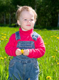 O pequeno no prado considera o dente-de-leão imagens de stock royalty free