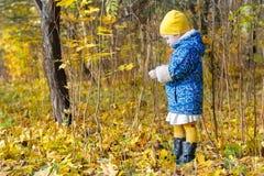 O perfil completo do comprimento da menina que está no outono amarelo e alaranjado caído deixa o groundcover fotografia de stock