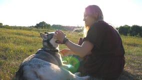 O perfil da menina feliz com o cabelo louro que senta-se na grama verde no campo e acaricia seu cão do cão de puxar trenós siberi video estoque