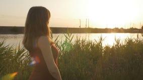 O perfil da silhueta da menina bonita que anda ao longo do riverbank com os juncos no por do sol, mulher bonito anda na natureza  filme
