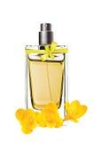 O perfume das mulheres na garrafa bonita e na flor da frésia isoladas Foto de Stock
