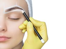 O Permanent compensa pelas sobrancelhas da mulher bonita com as testas grossas no salão de beleza foto de stock royalty free