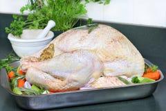 O peru cru, vestido e apronta-se para entrar no forno. Fotos de Stock Royalty Free