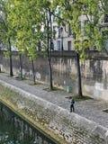 O pescador espera uma mordida nos bancos do Seine foto de stock royalty free