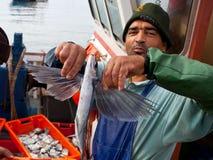 O pescador mostra um peixe de vôo foto de stock
