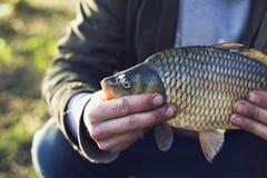 O pescador no lago travou uma carpa f?rias que pescam o conceito foto de stock royalty free