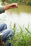 O pescador pescou para fora peixes pequenos do redeye Fotografia de Stock Royalty Free