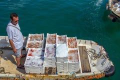 O pescador retorna ao porto após um dia de pesca, província de Genoa, riviera ligurian, Itália fotos de stock