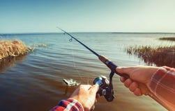 O pescador trava peixes na costa do lago, guarda seu giro das mãos fotos de stock royalty free