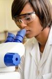 O pesquisador fêmea africano olha no microscópio Foto de Stock