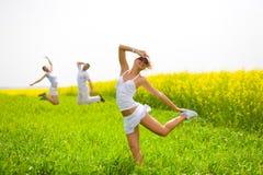 O pessoa feliz está saltando no campo Imagens de Stock Royalty Free