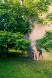 O pessoal do parque extingue cozinhar a madeira o tronco está queimando-se para dentro fotos de stock