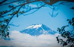 O pico de Butte com crista e de árvores do Mt Fuji entre a nuvem com folha verde na primavera fotos de stock royalty free