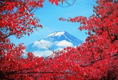 O pico de Butte com crista e de árvores do Mt Fuji entre a nuvem com a folha vermelha no th imagem de stock royalty free