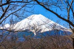 O pico de Butte com crista e de árvores do Mt olhar de fuji através dos ramos de sakura Fotos de Stock Royalty Free
