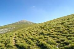 O pico está próximo Fotografia de Stock