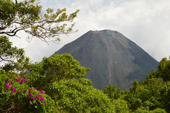 O pico perfeito do vulcão ativo e novo de Izalco visto de um ponto de vista no parque nacional de Cerro Verde em El Salvador Imagem de Stock