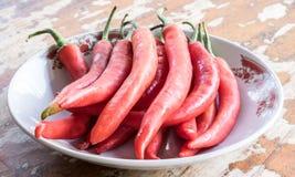 O pimentão é vegetal em Tailândia Fotografia de Stock Royalty Free