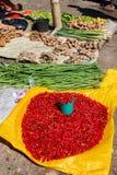 O pimentão e outro plantam pronto para ser vendido foto de stock royalty free