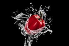 O pimento de sino vermelho fresco começ a batida por um córrego da água Fotografia de Stock Royalty Free