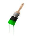 O pincel carregou com a cor verde que goteja fora das cerdas Imagem de Stock Royalty Free
