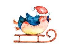 O pinguim dos desenhos animados em um chapéu vermelho, morno monta um trenó do inverno Fundo branco ilustração do vetor