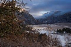 O pinheiro e a grama seca no fundo de um rio com uma estrada através de um vale da montanha no inverno alvorecem nas montanhas de Imagens de Stock