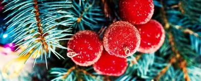 O pinho da árvore de Natal do vintage decorações ramifica e do Natal mim Imagens de Stock Royalty Free