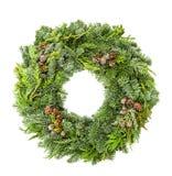O pinho do abeto da grinalda do Natal enfeita o fundo branco fotografia de stock