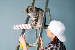 O pintor, o desenhista e o trabalhador da menina pintam um rolo e escovam a parede O gato senta-se ao lado da escada e olha-se fotos de stock royalty free