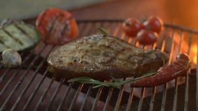 O piquenique da família fora pesca o bife grelhado grelhado no fogo vegetal grelhado do fundo e das chamas perto do plano da câme filme