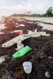 O plástico engarrafa a poluição e as algas em Sandy Caribbean Beach foto de stock royalty free